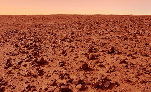 Martian-Meteorites